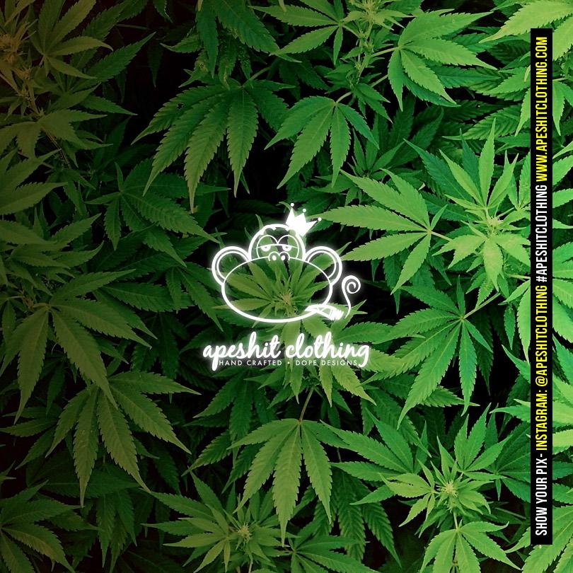 bic-lighter-sticker-apeshit-clothingplantlife-green