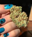 weed-finger-nail-decals-4-apeshit-shirt-lady-marijuana-weed-leaf-decals-fingernail-apeshit-clothing