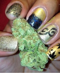 weed-finger-nail-decals-46-apeshit-shirt-lady-marijuana-weed-leaf-decals-fingernail-apeshit-clothing