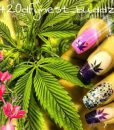 weed-finger-nail-decals-66-apeshit-shirt-lady-marijuana-weed-leaf-decals-fingernail-apeshit-clothing
