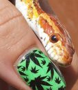 weed-finger-nail-decals-98-apeshit-shirt-lady-marijuana-weed-leaf-decals-fingernail-apeshit-clothing